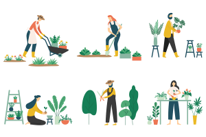 Gardening - the perfect social distancing hobby
